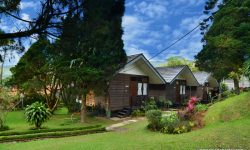 Rekomendasi Tempat Outing Kantor di Puncak: New Karwika Hotel & Resort