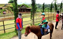 the-ranch-puncak3